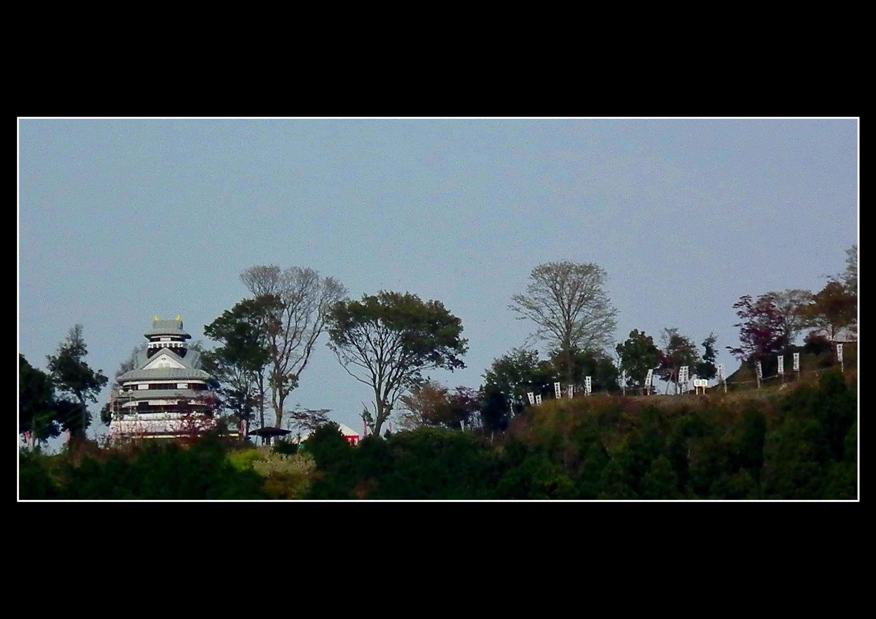 よみがえれ水口岡山城2015
